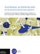 nationalactionplan_hrb_2014